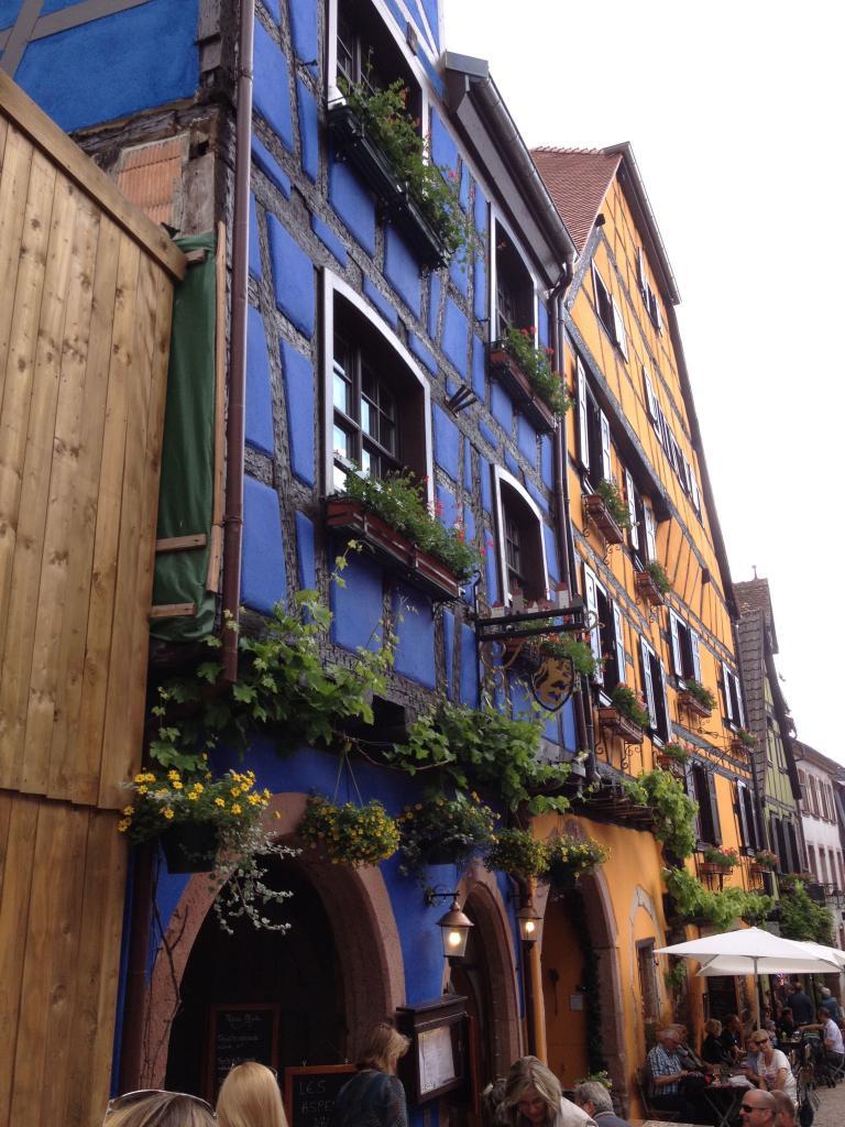 Séjour Alsace 2015 - 201 sur 203