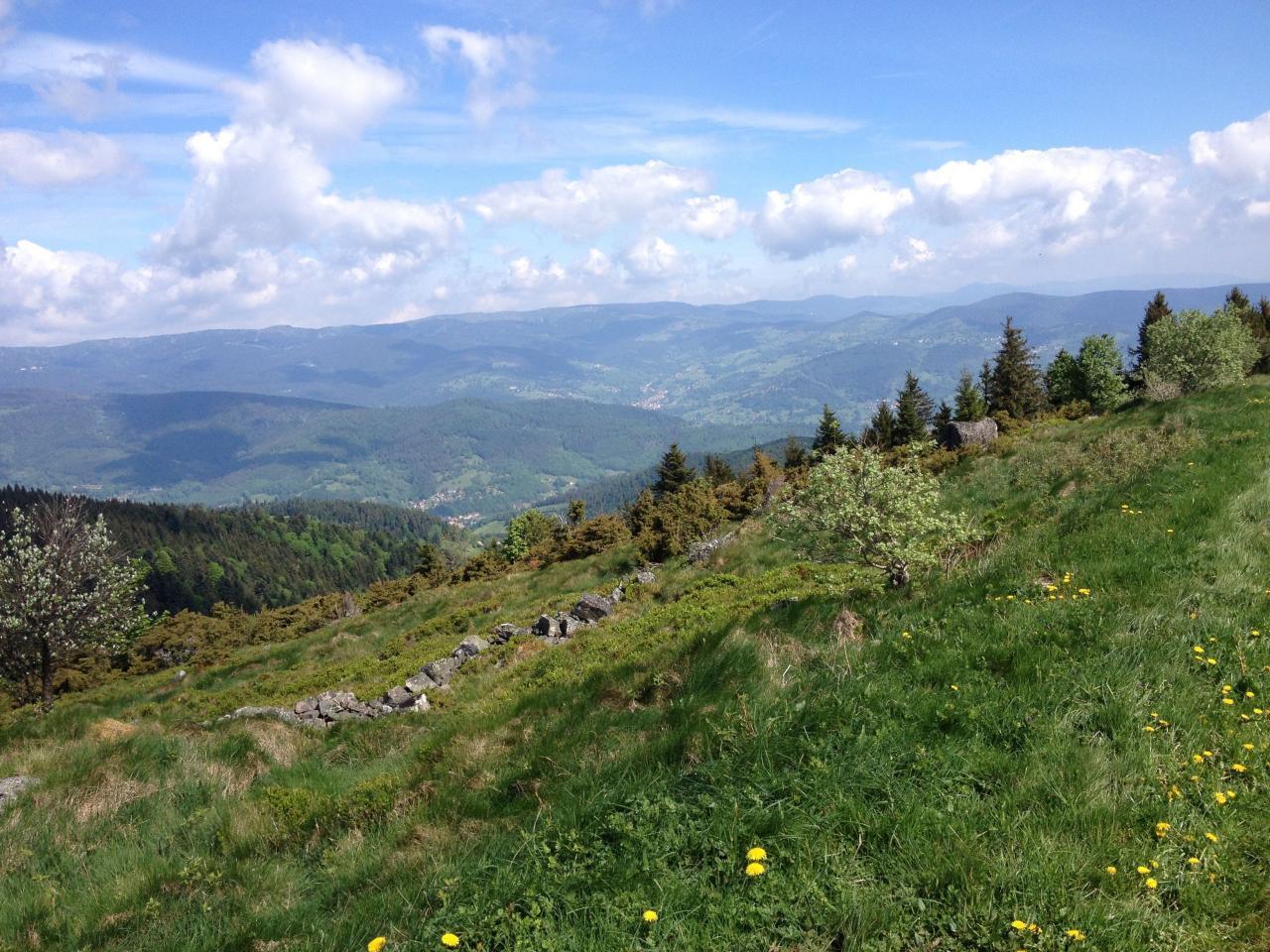 Séjour Alsace 2015 - 85 sur 203