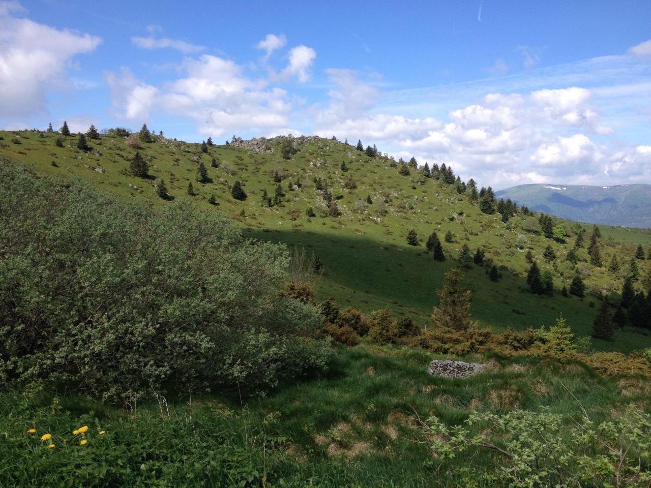 Séjour Alsace 2015 - 87 sur 203