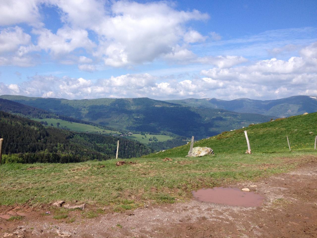 Séjour Alsace 2015 - 89 sur 203
